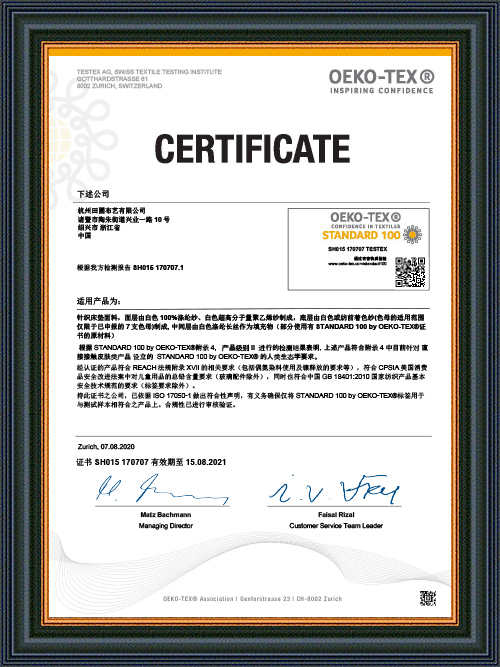 HANGZHOU TIANPU Z100 SH015 170707 2020 Mid